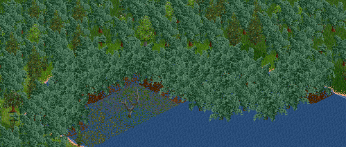 Mangroves Trees-3.png